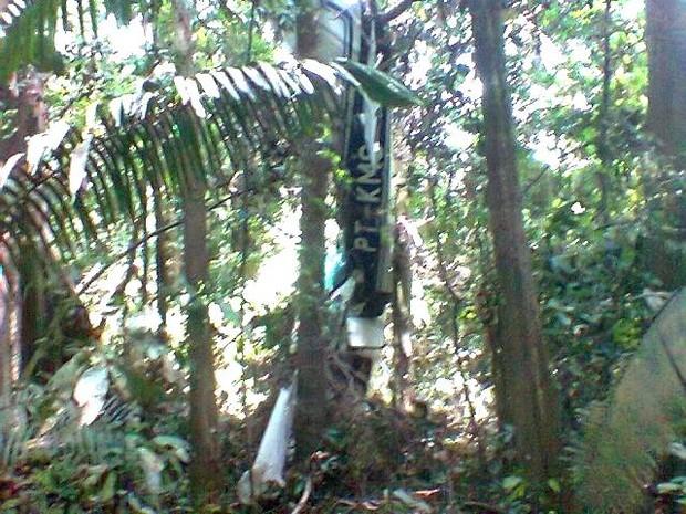 Motor da aeronave parou de funcionar e piloto fez um pouso forçado (Foto: Divulgação PM)
