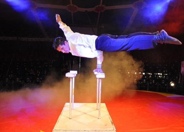Espetáculo circense reúne música, dança, interpretação com muita energia, sons e cores (Foto: Divulgação)