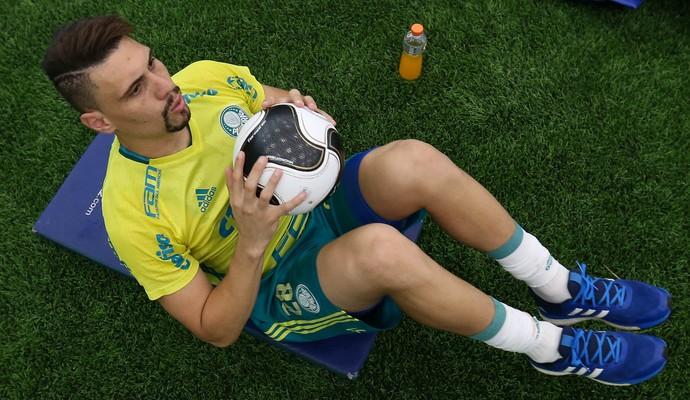 Moisés Palmeiras (Foto: Cesar Greco/Ag. Palmeiras/Divulgação)