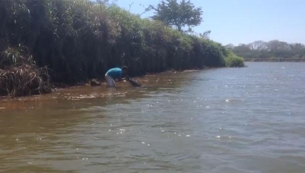 Cena registrada no Rio Tarcoles (Foto: Reprodução/YouTube/Michael B)