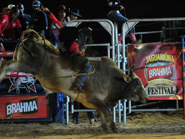 Peão monta em touro no Rodeio de Jaguariúna (Foto: Raul Pereira/G1)