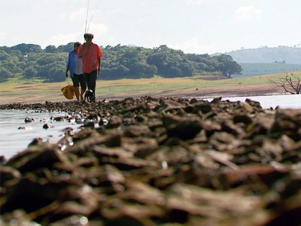 Ponte reapareceu após seca no Lago de Furnas (Foto: Devanir Gino/ EPTV)