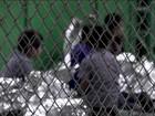 EUA deportaram 463 imigrantes ilegais sozinhos, sem os filhos