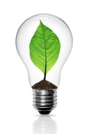 Prêmio Época Empresa Verde (Foto: Shutterstock)