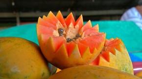 frutas reaproveitadas  (Foto: Reprodução/ TV Tapajós)