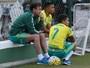 No aniversário da arena, Palmeiras tem briga por artilharia do estádio