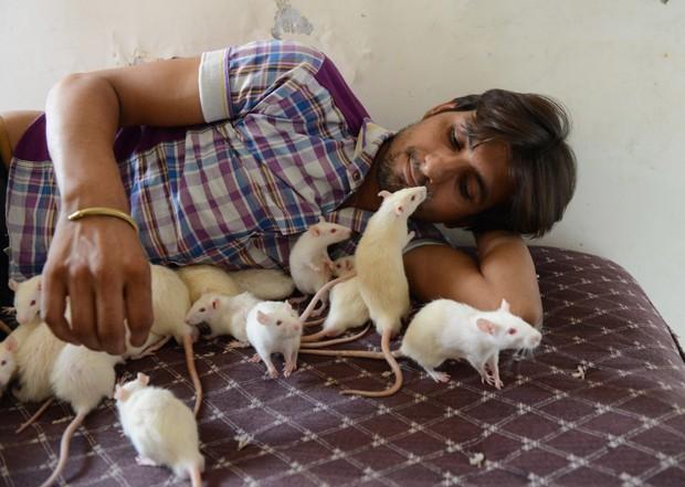 Sharma, que é dono de uma pequena loja, ganhou apelido de 'homem rato' (Foto: Sam Panthaky/AFP)