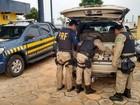 PRF apreende 46 quilos de cocaína escondidas em carro, em Marabá