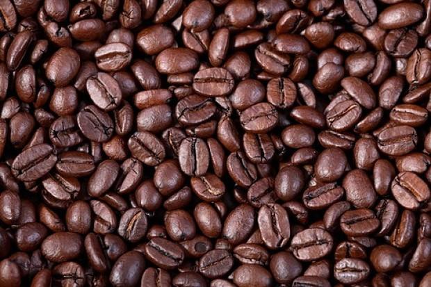 Café é um excelente estimulante e promove a acuidade cerebral, além de ter efeito antioxidante que mantém a saúde do cérebro (Foto: Reprodução)