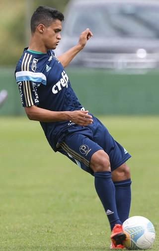 Erik Palmeiras (Foto: César Greco / Ag. Palmeiras / Divulgação)