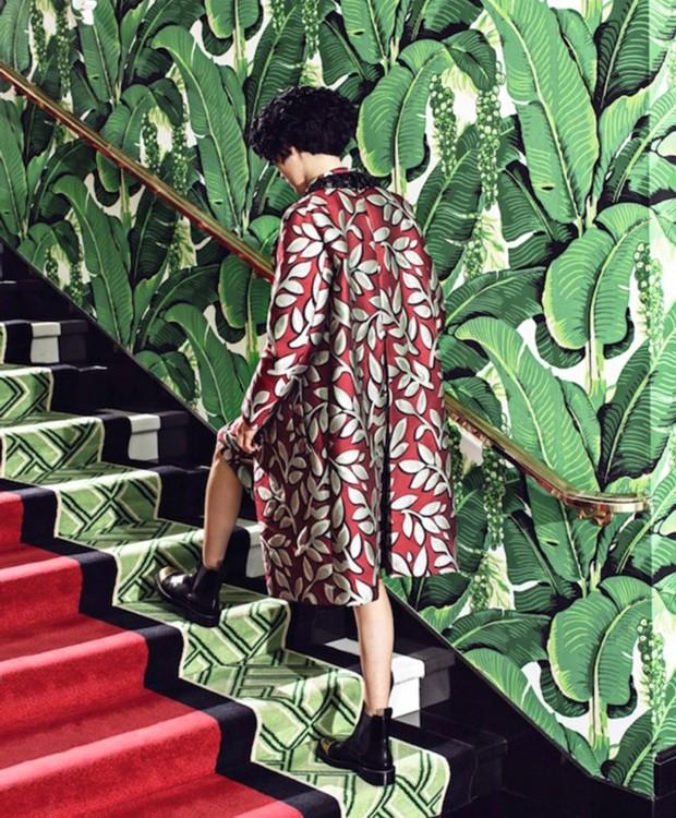 Papel de parede Brazilliance, assinado por Dorothy Draper, à venda com exclusividade na Celina Dias (Foto: Divulgação)