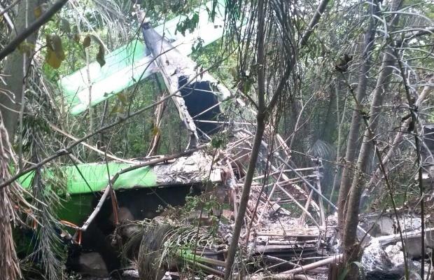 Avião de pequeno porte cai na fazenda de Júnior Friboi em Goiás (Foto: Divulgação)