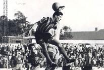 A história do Grêmio em números e vídeos (Divulgação/Memorial Herminio Bittencourt)