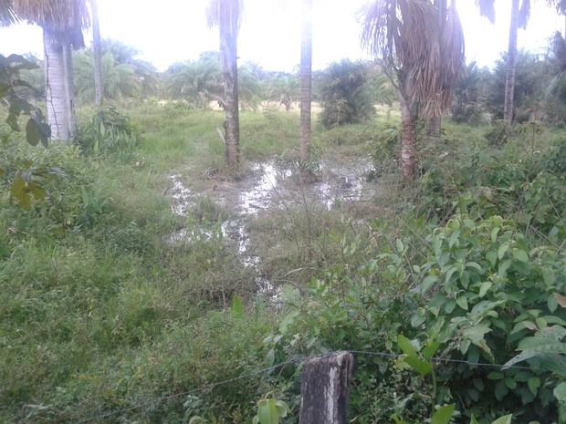 Esgoto era despejado no córrego Tranqueira, que passa por Guaraí (Foto: Divulgação/PM-TO)