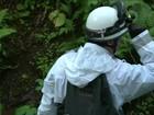 Exército japonês ajuda em busca por criança deixada por pais em floresta