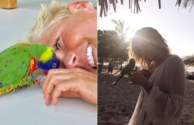 Xuxa e Sasha amam a natureza e os animais  (Foto: Reprodução Instagram )