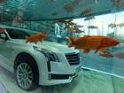Em campanha bizarra, Cadillac CT6 é exibido submerso em aquário chinês