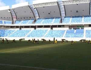 Treino Alecrim Arena das Dunas (Foto: Jocaff Souza/GloboEsporte.com)