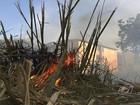 Após fim do período chuvoso, número de queimadas cresce em Goiás