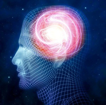 cérebro Eu Atleta (Foto: Agência Getty Images)