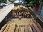 PMA apreende madeira nobre extraída de área indígena em MS
