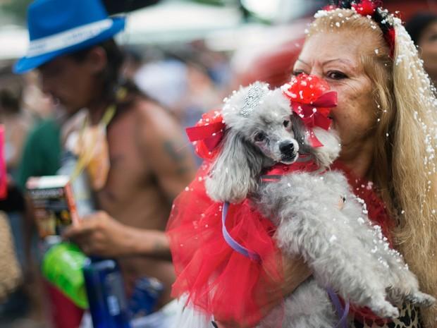 Cães desfilam fantasiados no 'Blocão', que acontece em Copacabana, no Rio de Janeiro (Foto: AFP PHOTO/CHRISTOPHE SIMON)