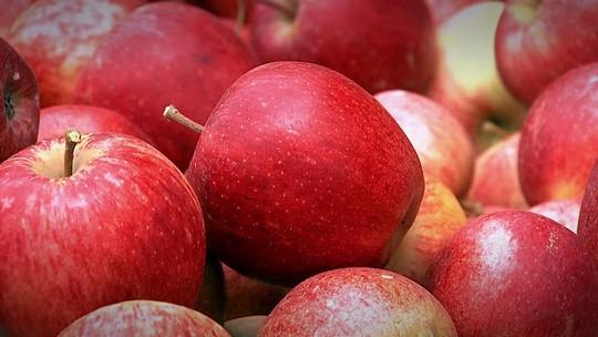 Produção de maçãs tem aumento de 11% no faturamento em 2016