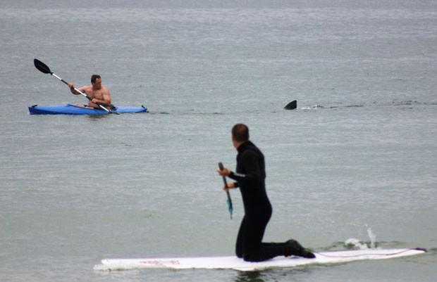 Canoísta americano Walter Szulc Jr. levou um susto após um tubarão se aproximar de seu caiaque na praia de Nauset. (Foto: Shelly Negrotti/AP)