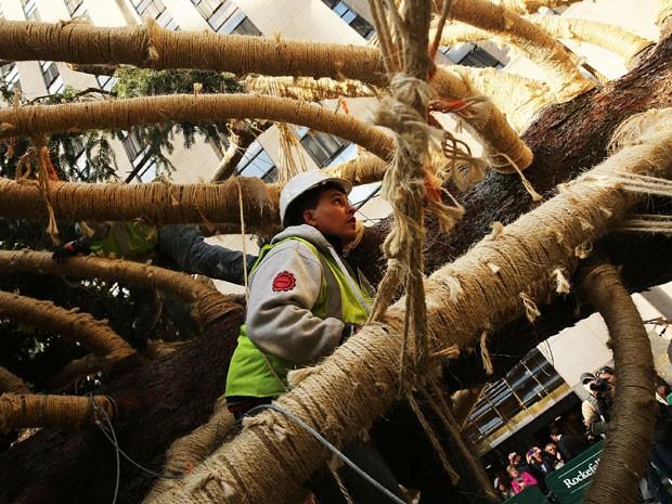O pinheiro tem 25 m de altura e pesa 13 toneladas (Foto: Spencer Platt/Getty Images North America/AFP)