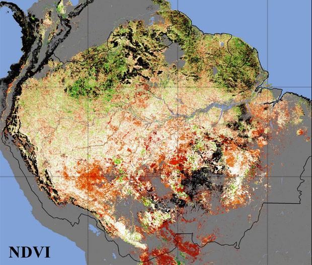 Estudo diz que risco de seca no sul da Amazônia é maior do que se pensava