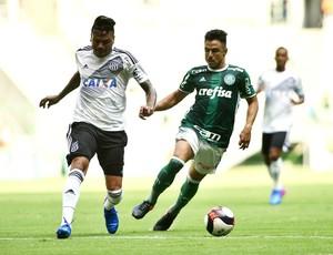 Willian Palmeiras x Ponte Preta (Foto: Marcos Ribolli)