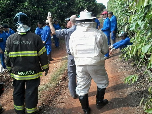 Bombeiros usaram equipamentos para ir ao local do ataque (Foto: Divulgação/ Bombeiros Tatuí)