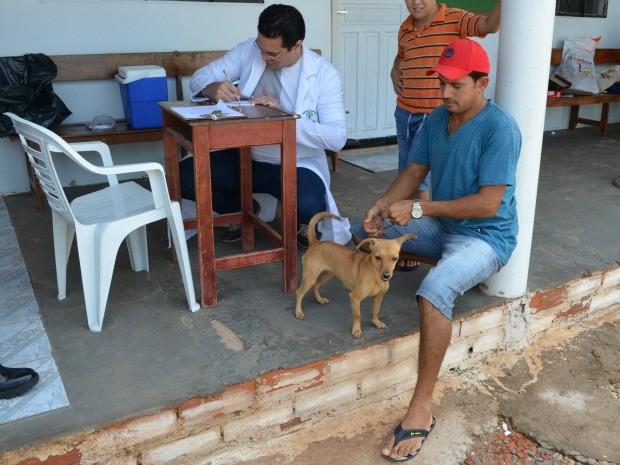 Apesar dos esforços cerca de dois mil animais ficaram sem a vacinação antirrábica em Cacoal.  (Foto: Magda Oliveira/G1)