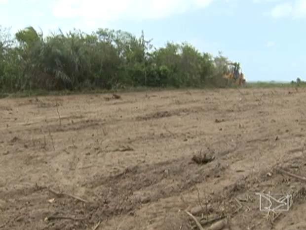 Área onde deve ser construído presídio de segurança máxima em São Luís. (Foto: Reprodução/TV Mirante)