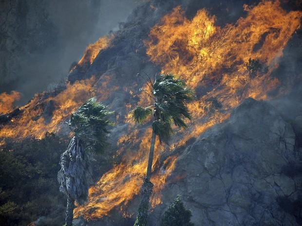 Incêndio na Califórnia atinge vegetação da área; fortes ventos fazem com que as chamas se alastrem rapidamente. (Foto: Reuters)