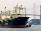 Baleeiros japoneses caçam mais de 200 baleias grávidas na Antártica