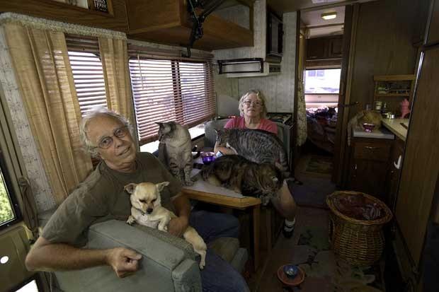 Bob Walker e Frances Mooney com seus gatos no condomínio felino em San Diego na Califórnia  (Foto: Cortesia Bob Walker/ AP)