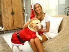 Luisa Mell posa com seus cachorros em clima natalino