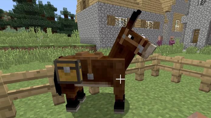 Coloque um baú em sua mula e ele irá automaticamente se transformar em uma sacola em Minecraft (Foto: Reprodução/Rafael Monteiro)