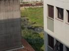Moradora pede fiscalização em terreno com água parada em Guarujá