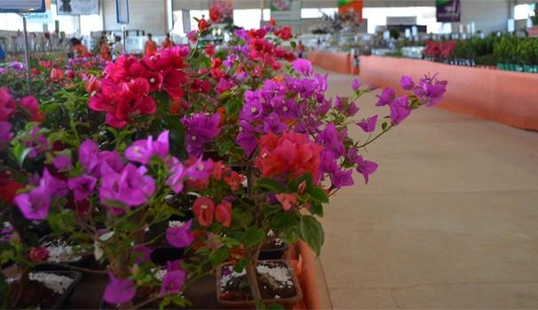 Vencedores de concurso cultural levam a família para curtir as flores da Expoflora 2015 (Foto: Bruno Teixeira / Rede Globo)