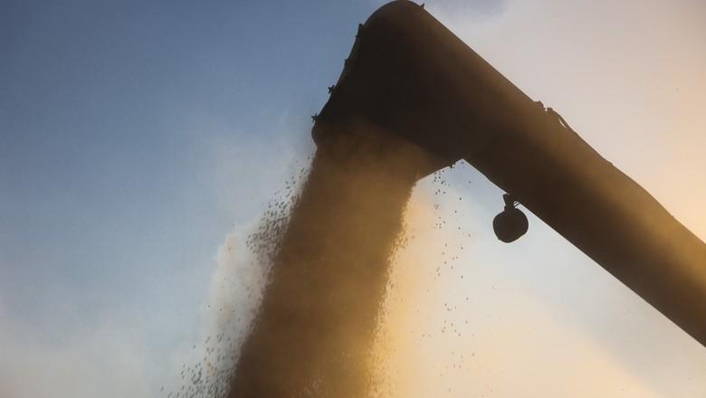 soja-colheita-graos (Foto: United Soybean Board/CCommons)