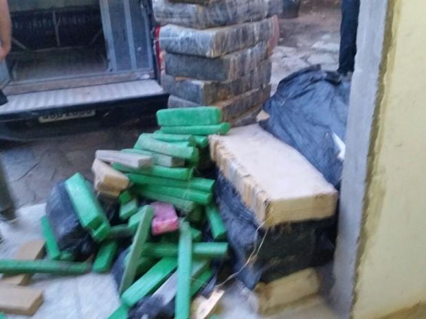 Droga estava em um assentamento na zona rural de Upanema (Foto: Divulgação/Polícia Civil do RN)
