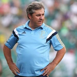 Gilson Kleina jogo Palmeiras e Ponte Preta (Foto: Marcos Bezerra / Futura Press)