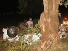 Rapaz morre após veículo capotar e bater em árvore na rodovia PR-442
