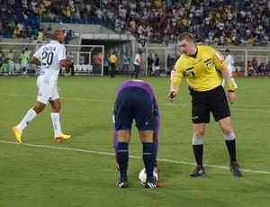 Árbitro Anderson Daronco - Fábio - goleiro do Cruzeiro (Foto: Augusto Gomes/GloboEsporte.com)