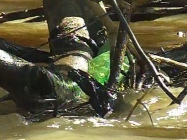 Lixo jogado nas margens acaba enroscando nos galhos no rio  (Foto: reprodução/TV Tem)