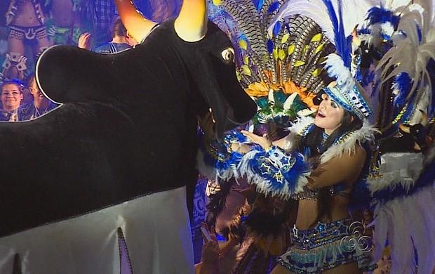 Primeira edição deste ano do 'Vamos Brincar de Boi' contou com itens do Caprichoso (Foto: Amazonas TV)