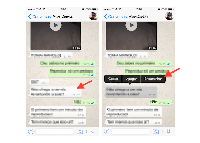 Encaminhando uma mensagem do WhatsApp no iPhone (Foto: Reprodução/Marvin Costa)