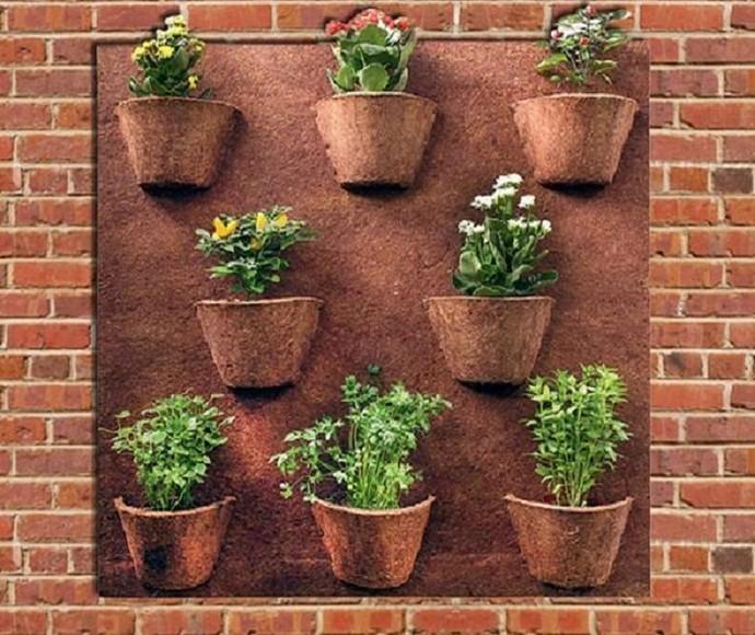 'Combinado' dá dicas de como montar jardins verticais em casa (Foto: Imagem da internet)